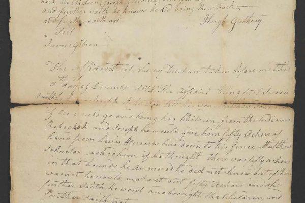 Affidavits of two witnesses