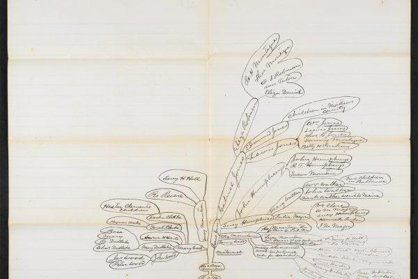 Family tree of Robert Mountain