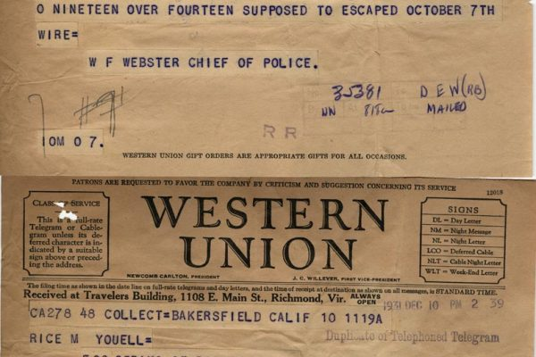 Telegrams from W.F. Webster