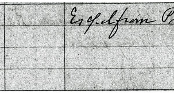 Entry 18903 Enlargement