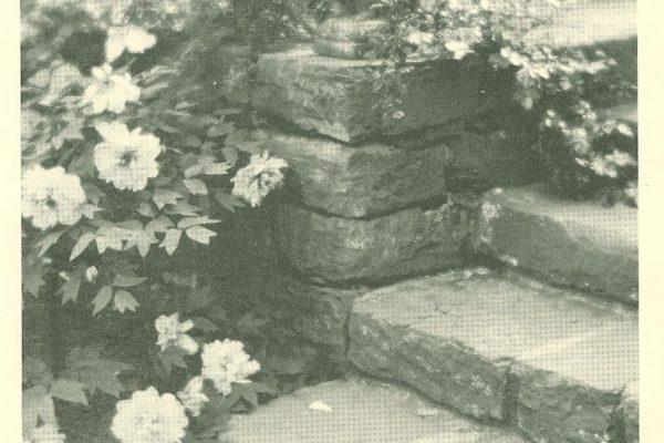 Foliage, Garden Design, by Marjorie Sewell Cautley, New York, 1935.