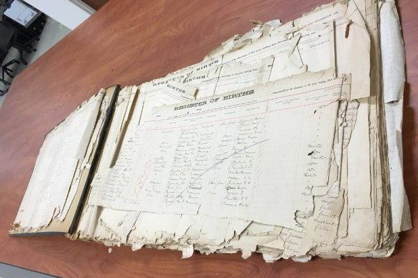 Elizabeth City County Register of Births and Deaths, 1873-1896