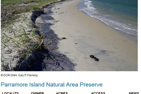 Modern view of Parramore's Island beach. http://www.dcr.virginia.gov/natural-heritage/natural-area-preserves/parramore